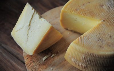 Basic Guide to Making Cheese