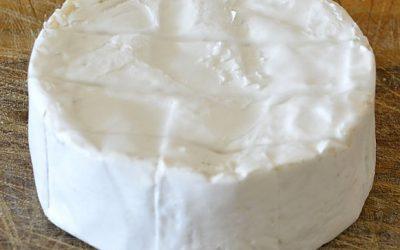 Camembert Recipe