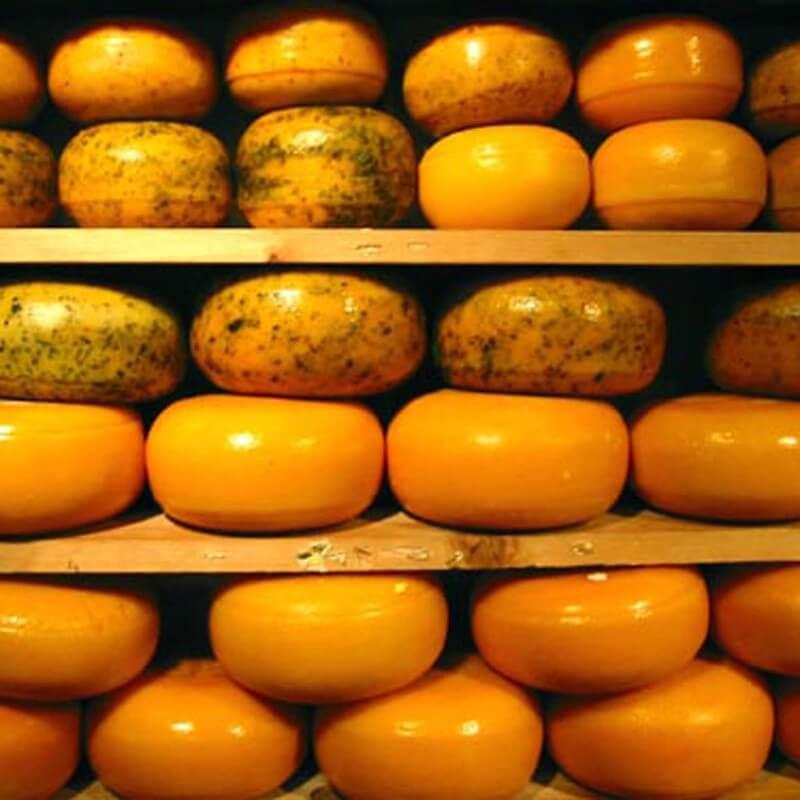Eye Benefits of Cheese