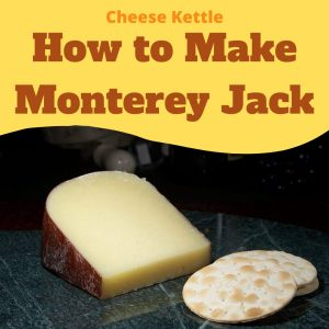 how to make monterey jack cheese